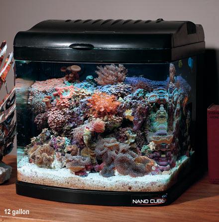 12-gallon-jbj-nano-cube